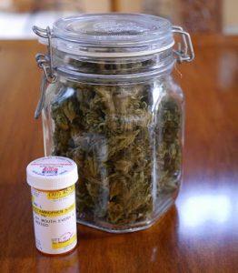 Cannabis opioid interaction